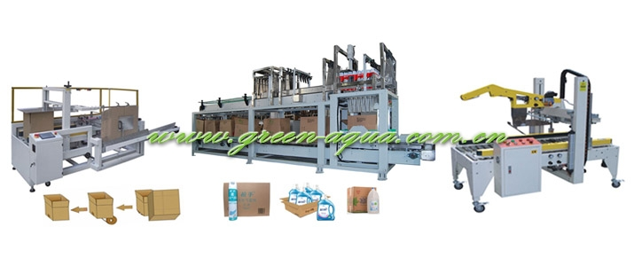 Carton Packing Line